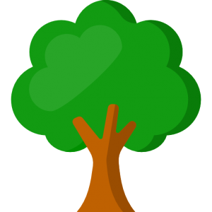 arbre illustration